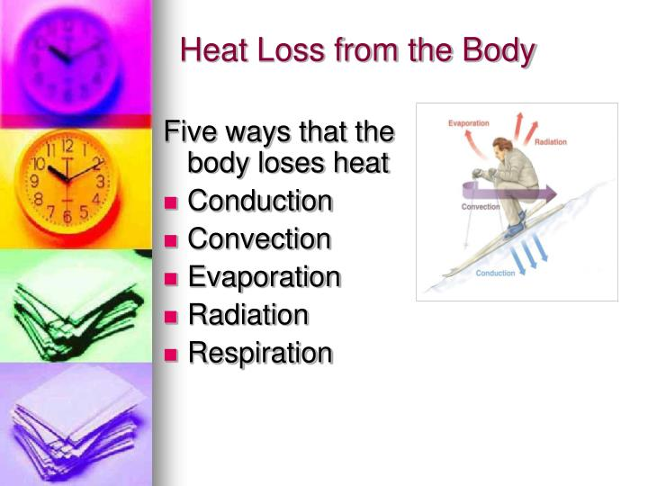 Heat Loss from the Body