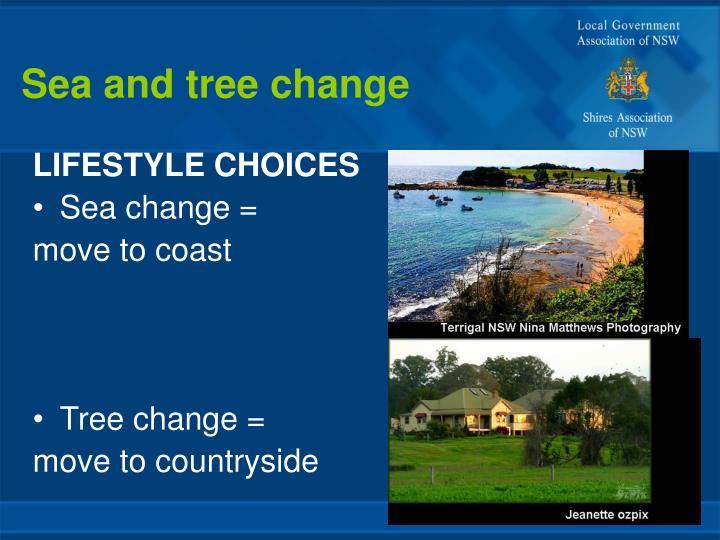 Sea and tree change