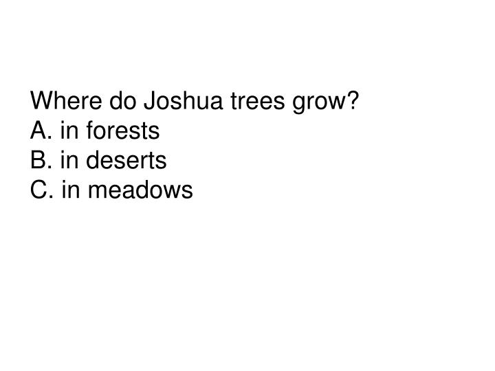 Where do Joshua trees grow?