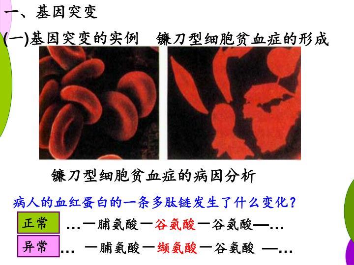 一、基因突变