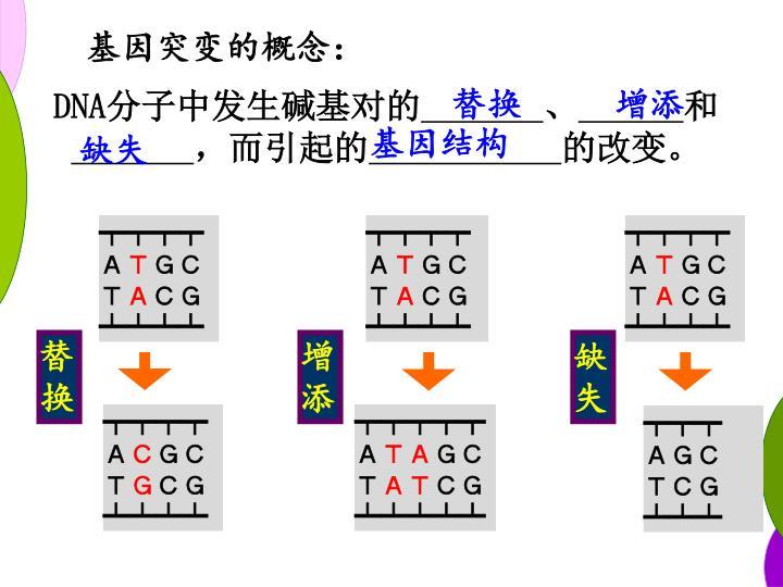 基因突变的概念: