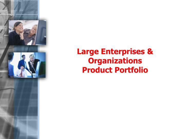 Large Enterprises & Organizations