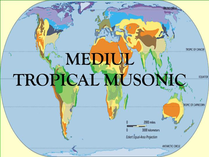 MEDIUL              TROPICAL MUSONIC