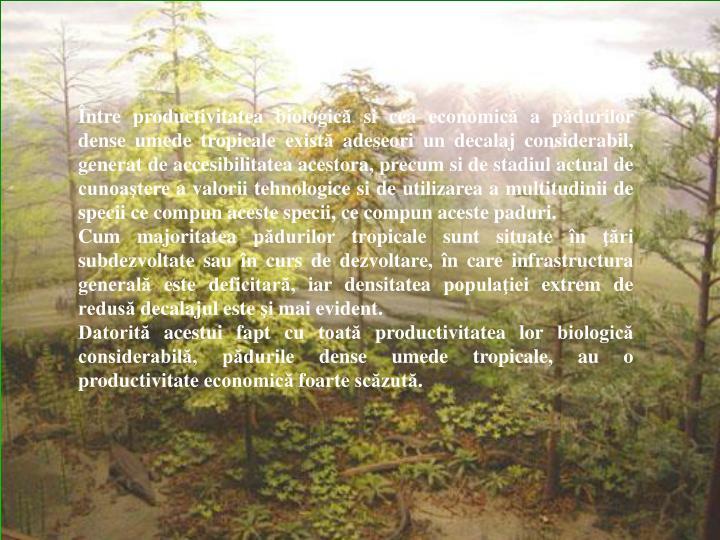 Între productivitatea biologică si cea economică a pădurilor dense umede tropicale există adeseori un decalaj considerabil, generat de accesibilitatea acestora, precum si de stadiul actual de cunoaştere a valorii tehnologice si de utilizarea a multitudinii de specii ce compun aceste specii, ce compun aceste paduri.