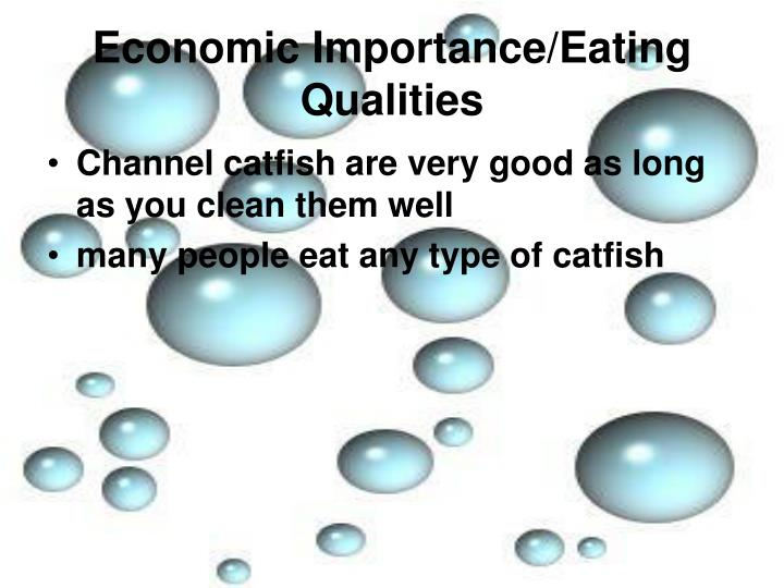 Economic Importance/Eating Qualities