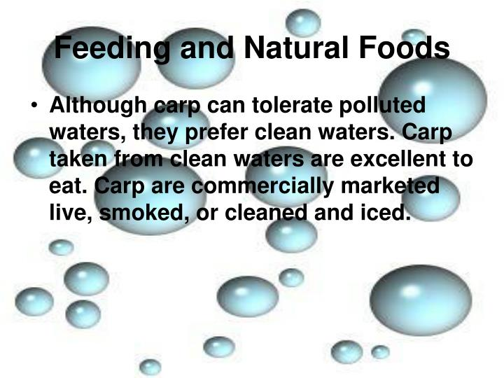 Feeding and Natural Foods