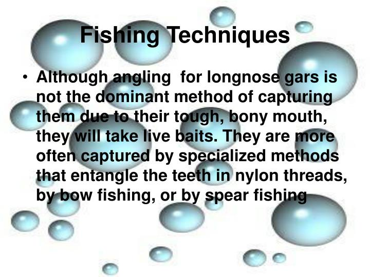 Fishing Techniques