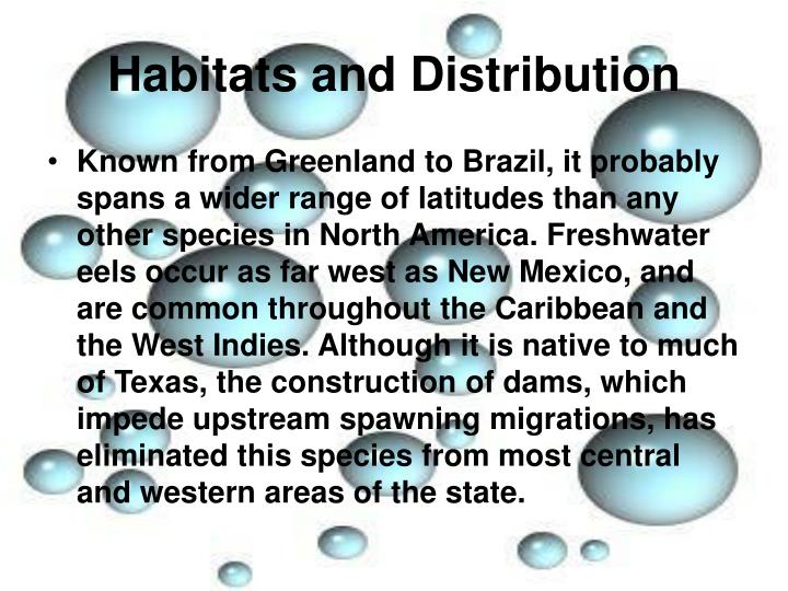 Habitats and Distribution