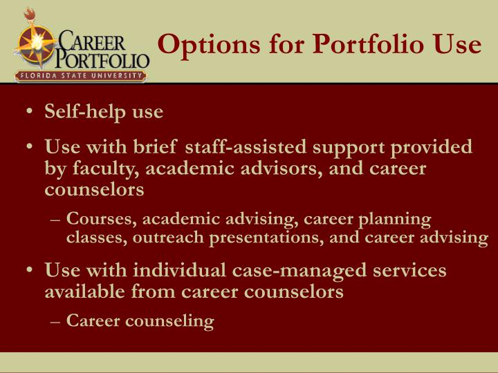 Options for Portfolio Use