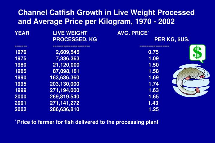 Channel Catfish Growth in Live Weight Processed