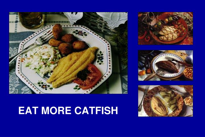 EAT MORE CATFISH