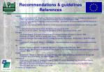 recommendations guidelines references