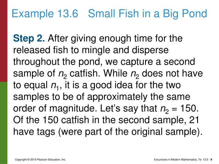 Example 13.6Small Fish in a Big Pond