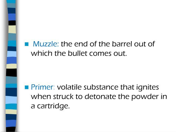 Muzzle: