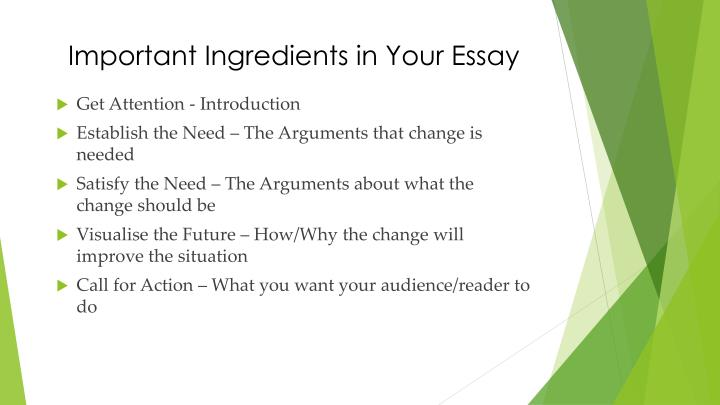 Important Ingredients in Your Essay