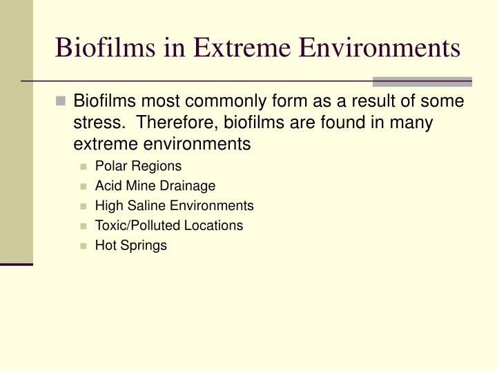Biofilms in Extreme Environments