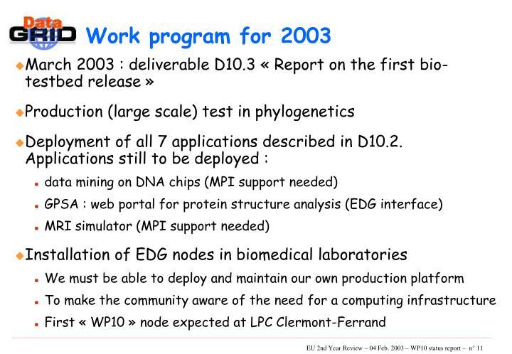 Work program for 2003
