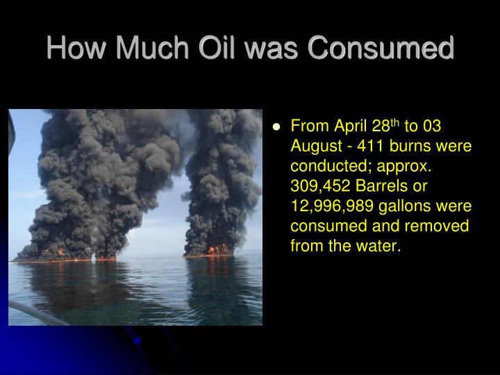 How Much Oil was Consumed