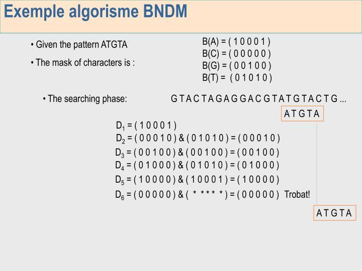 Exemple algorisme BNDM