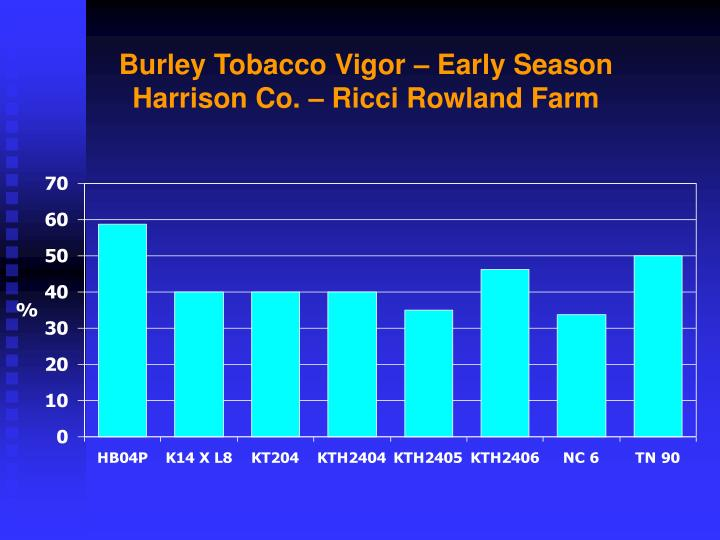 Burley Tobacco Vigor – Early Season