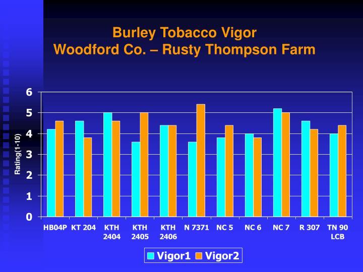 Burley Tobacco Vigor