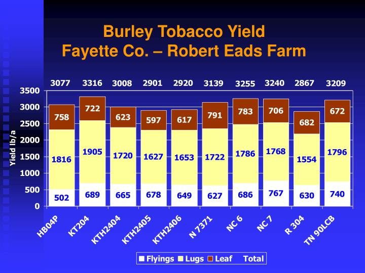 Burley Tobacco Yield
