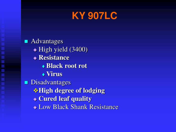 KY 907LC