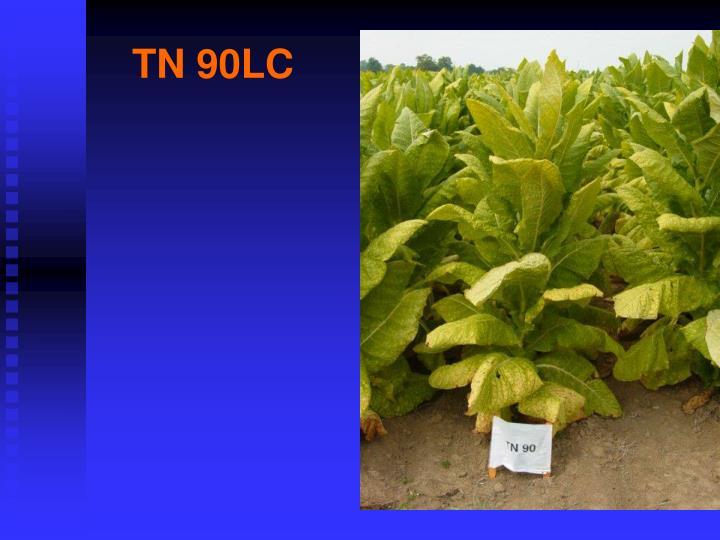 TN 90LC