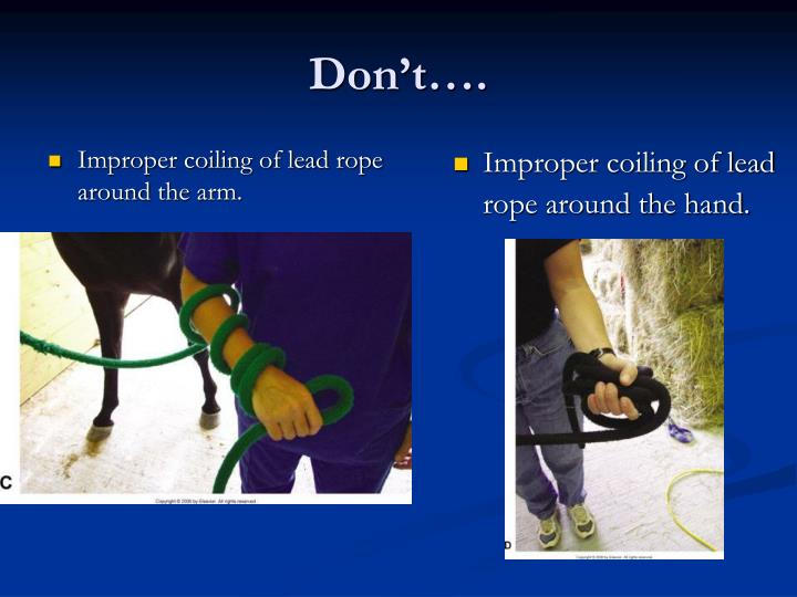 Improper coiling of lead rope around the arm.