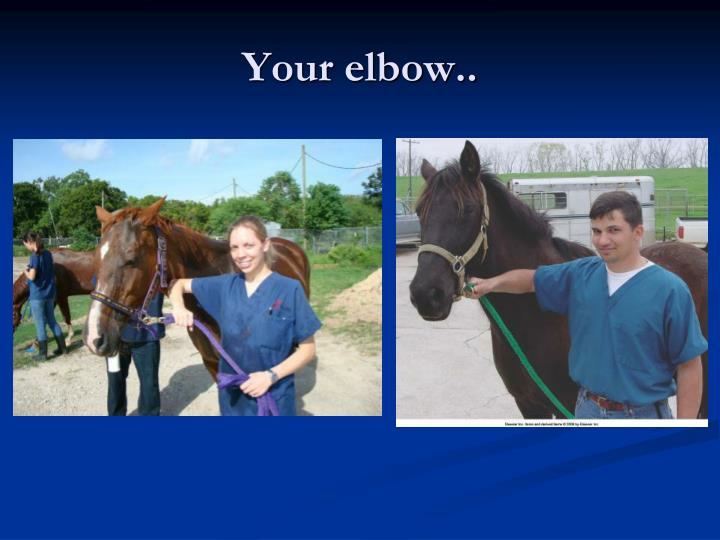 Your elbow..