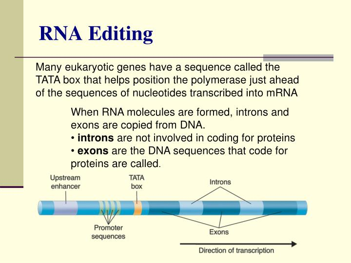 more about rna To make the rna suitable for rna-seq it is typically fragmented and then the quality and fragmentation are assessed but rna-seq is a generally more flexible.