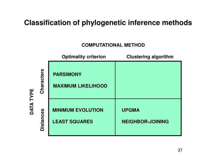 Classification of phylogenetic inference methods