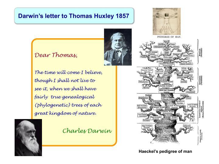 Darwin's letter to Thomas Huxley 1857