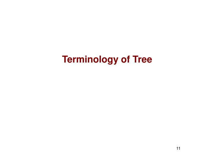 Terminology of Tree