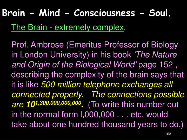 Brain - Mind - Consciousness - Soul.