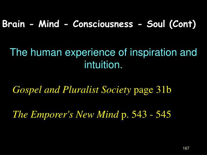 Brain - Mind - Consciousness - Soul (Cont)