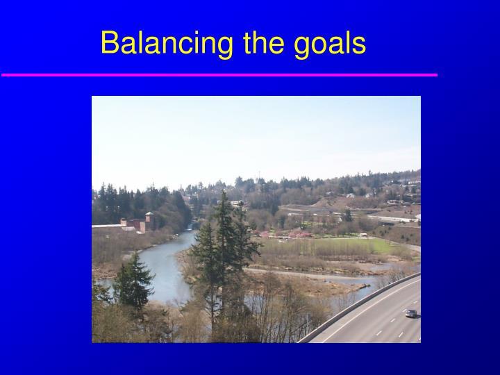 Balancing the goals