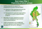 next steps pillar i organising producer groups
