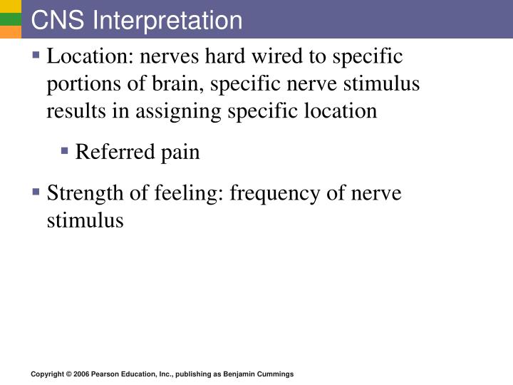 CNS Interpretation
