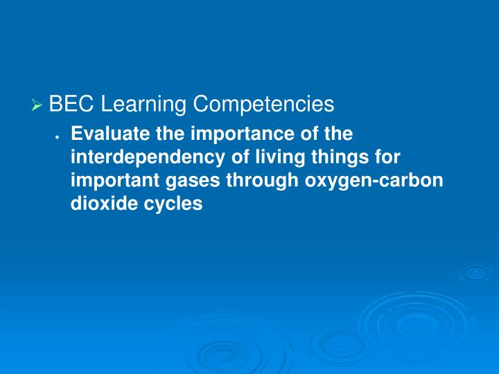 BEC Learning Competencies