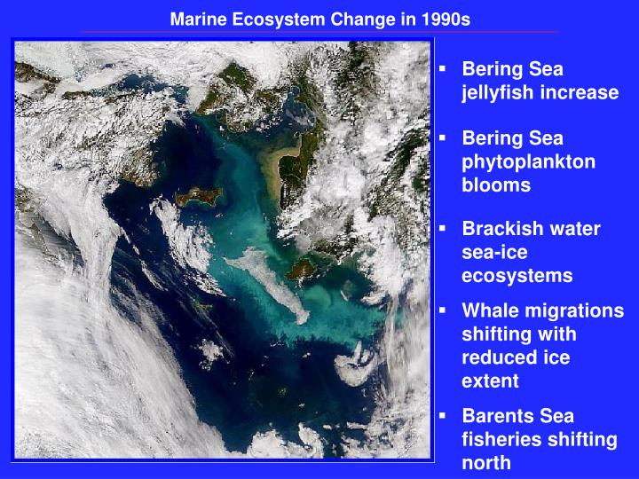 Marine Ecosystem Change in 1990s