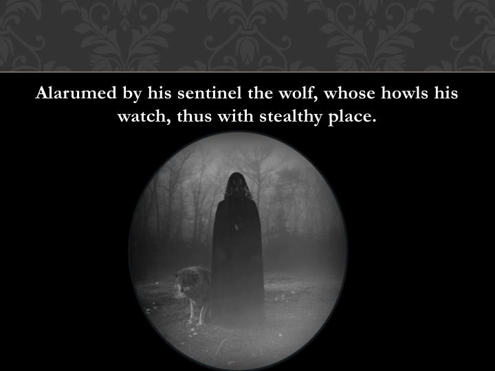 Alarumed by his sentinel the wolf, whose howls his watch, thus with stealthy place.