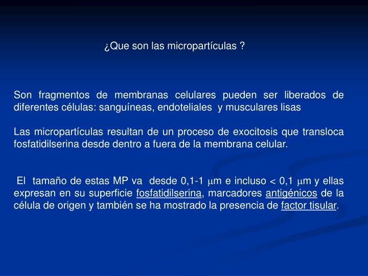 Que son las micropartculas ?