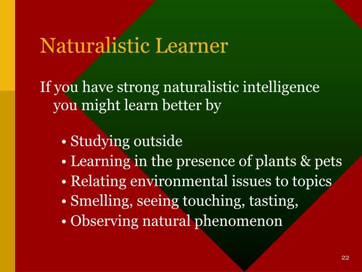 Naturalistic Learner