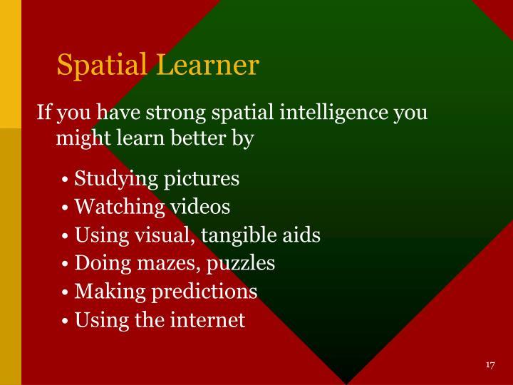 Spatial Learner