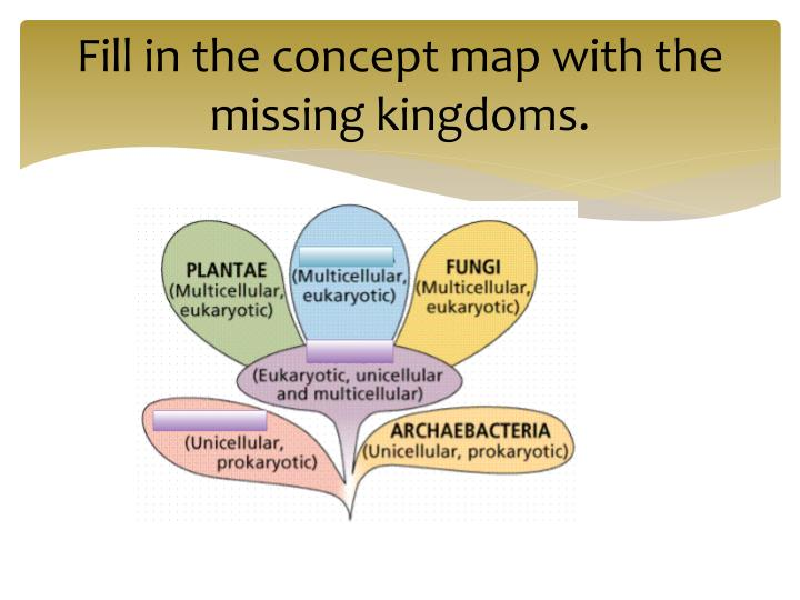 Fill in the concept map with the missing kingdoms.