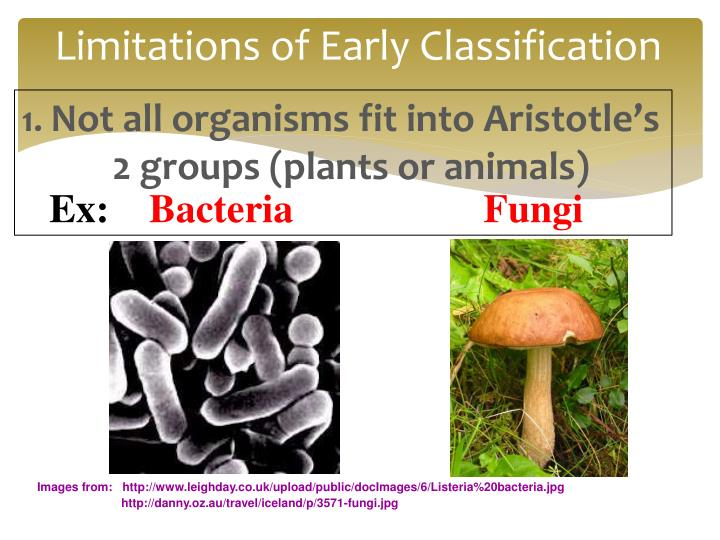 Limitations of Early Classification