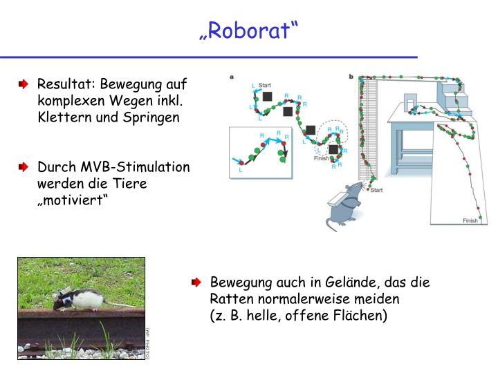 """Roborat"""