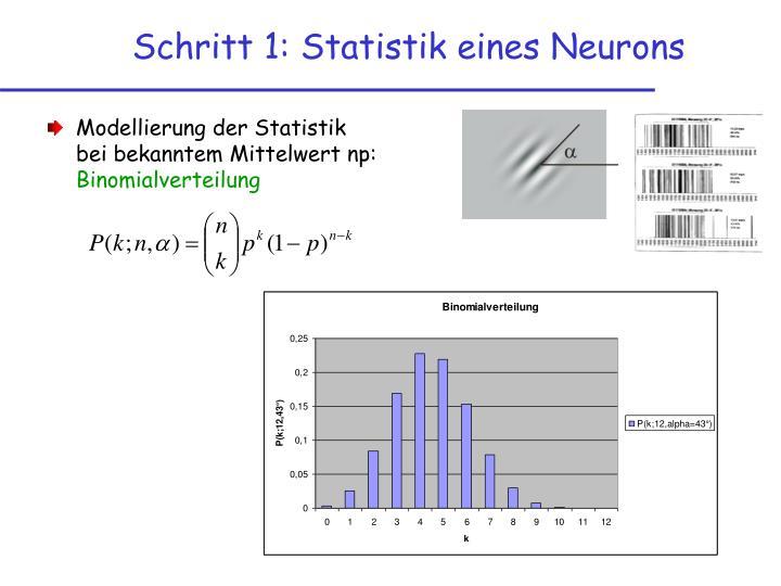 Schritt 1: Statistik eines Neurons