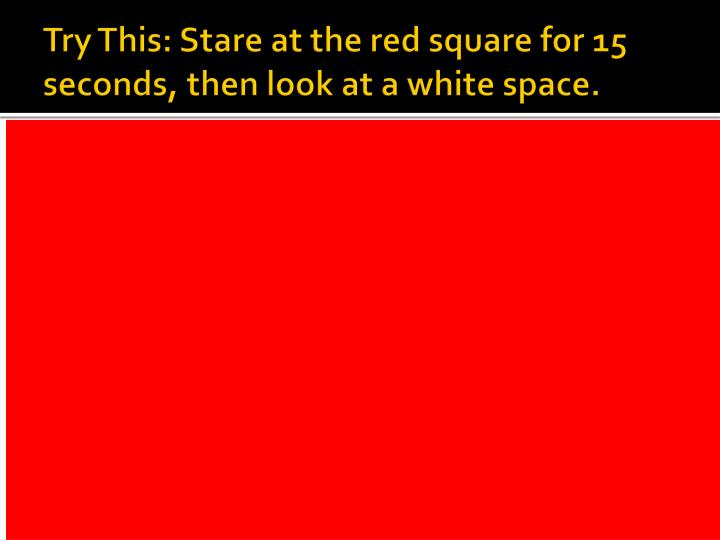 Try This: Stare at the red square for 15 seconds, then look at a white space.